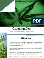 Cannabis (Maconha)