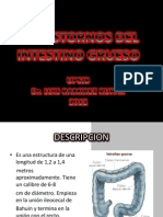 Transtornos Del Intestino Grueso