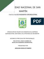Planta Procesadora de Palmito en Conserva