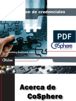 Credenciales CoSphere Consulting Group 2010