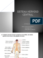 Sistema Nervoso Central. PPT
