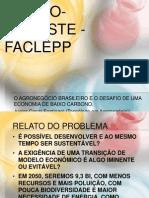 APRESENTAÇÃO ARTIGO AGRONEGOCIO E BX CARBONO