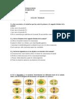 guameiosis2medio-120511170628-phpapp02