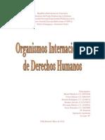 Organismos Internacionales de Derechos Humanos
