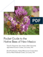 Native Bees of New Mexico
