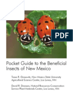 Benefical Insects of New Mexico