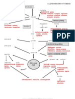 Biosynthesis ALKALOID 2pg