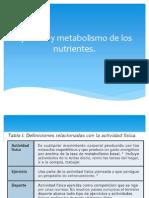 Ejercicio y Metabolismo de Los Nutrientes