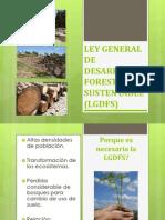 LGDFS