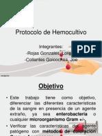 Protocolo Lorena