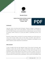 Relatório Técnico Projeto Agentes Comunitários de Desenvolvimento - Itabira - MG