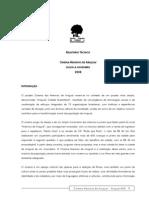 Relatório Técnico Cinema Meninos de Araçuaí Julho a Novembro 2008