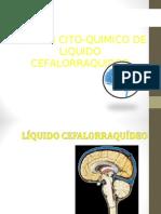CITOQUIMICO LCR