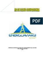Programa de Salud Ocupacional Empresa Energuaviare S.a. E.S.P