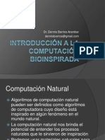 01_Introduccion a La Computacion Bioinspirada