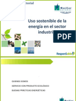 Uso Sostenible de la Energía en el Sector Industrial