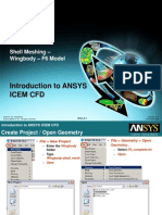 ICEM-Intro 13.0 WS3.2 Wingbody Shell