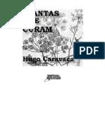 2938311 Plantas Que Curam Hugo Caravaca