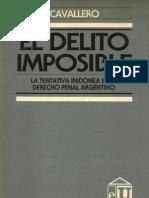 El Delito Imposible - Juan Ricardo Cavallero