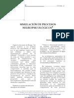 simulacion procesos neuropsicologicos