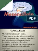 Mesencéfalo