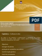 Biotech Filipa Fontes