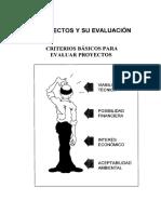 031171-06.pdf evaluación proyectos