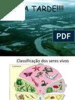 aula1 classificação dos seres vivos