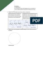 Inclusion Citoplasmatica Vegetal