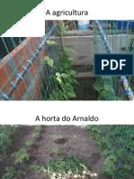área projeto Afonso e Arnaldo