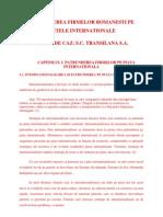 Patrunderea Firmelor Romanesti Pe Pietele Internationale