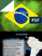 BRAZILIA - Proiect Geografie - Florin Bizna & Ionut Chiriac