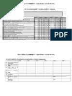 AE-CMR Reporte diario de seguridad en zanjas.doc