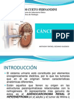 cancerrenal2-091020194822-phpapp01
