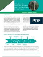 Biodiversity & Oil&Gas good practices _guidelines EBI2003