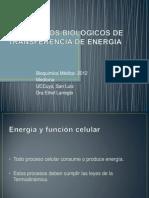 Mecanismos Biologicos de Transferencia de Energia (1)