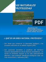 AREASNATURALESPROTEGIDAS1-1