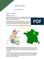 Ficha de Inventario Turistico 3 Champagne 5