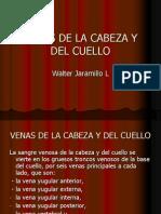 Venas de La Cabeza y Del Cuello - Copia - Copia