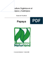 Papaya 2005