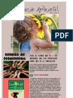 Blog PDF