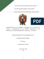 Universidad Nacional de San Cristobal de Huamanga-tesis211211 - Perdidas - Plca