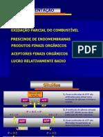 RESPIRAÇÃO-REV.2011