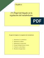funcion metabolica higado