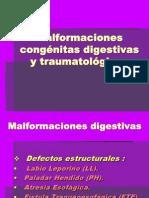 Malformaciones Congenitas Digestivas y Traumatologicas 1217535072084088 9