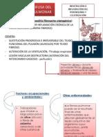Enfermedad Difusa Del Parenquima Pulmonar