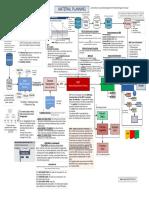 1 Material Planning Process Www.sap Terp10.Com .Ar 1