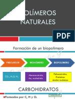 56606969 Xi Polimeros Naturales