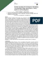 Activity of Callosobruchus Maculatus (F.) (Coleoptera