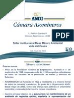 Taller institucional Mesa Minero Ambiental Valle del Cauca  - ANDI Cámara Asomineros